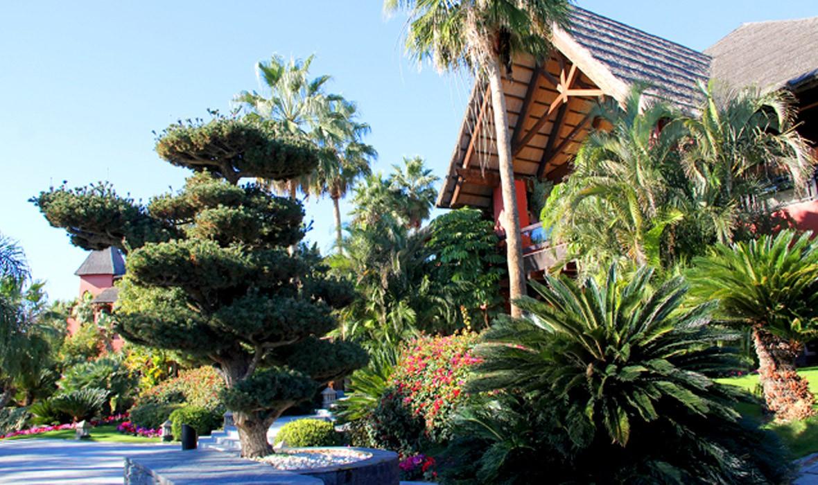 5 star hotels in benidorm bonsai restaurant asia - Hotel benidorm asia garden ...