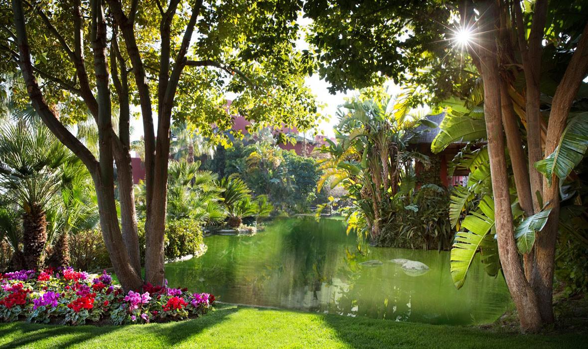 Hoteles con encanto alicante jardines tropicales hotel - Plantas tropicales para jardin ...